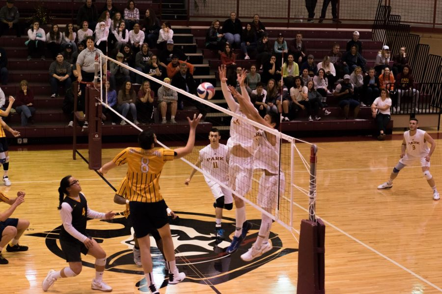 Park+Pirates+men%27s+volleyball+playing+the+Graceland+University+Yellow+Jackets
